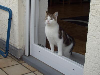 Franz erster Schritt auf den Balkon